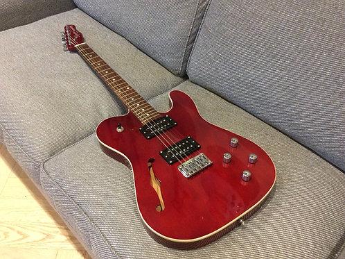 Fender Squier Thinline HH Set NeckTelecaster