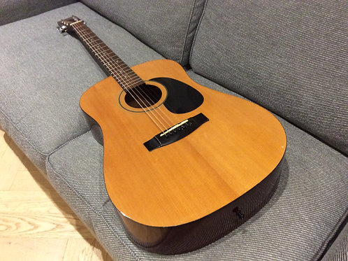 Sigma by Martin DM1 Acoustic