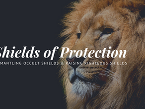 Shields of Protection