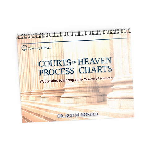 Courts of Heaven Process Charts (Spiral Edition)