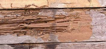 termite-damage-e1514482550473.jpg