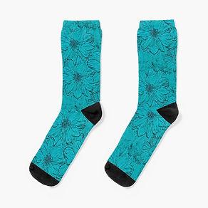 work-63694749-socks (1).jpg