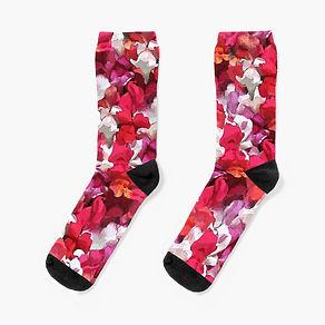 work-68799415-socks.jpg