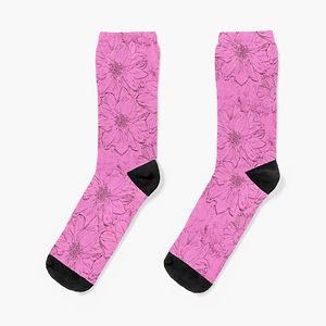 work-63767018-socks (1).jpg
