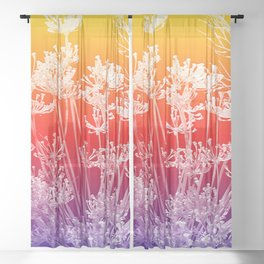 bold-and-proud-sheer-curtains.jpg