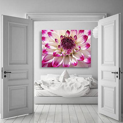 Poppy Pod Contemporary Botanical Artwork