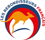 BAT logo_vecto_300.png