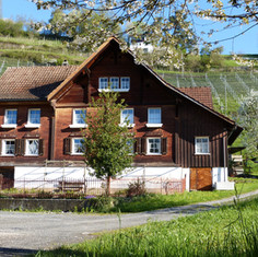 AU-Bauernhaus_Rebberg.jpg