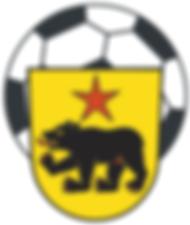 FC Altstätten.png