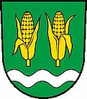 Diepoldsau.png