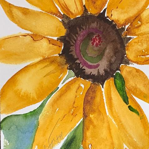 Sunday Sunflower
