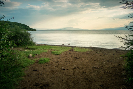 Chamo Lake