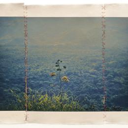 06  Miguel Soler-Roig @ Barbara Davis Ga