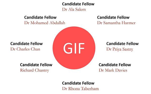 GIF fellows.JPG