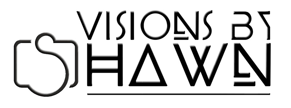 Official logo for Visions By Shawn