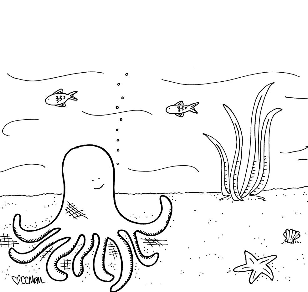 Octopus & Friends