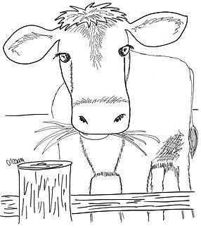 This charming cow grazes on grass behind a wooden fence. The Custom Coloring Mom is an Iowa farm girl; she knows this scene all too well. Mooooooooo!