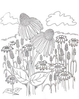 Summertime wildflowers -- inspired by Custom Coloring Mom's lake vacation this week. Have fun making this summery scene your own.