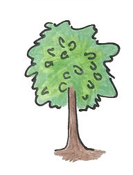 Doodad Tree.jpg