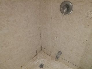 Why Your Shower Is Moldy: Don't Blame The Tile! (Also you do get what you pay for)