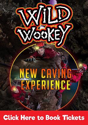 wild-wookey-box.jpg