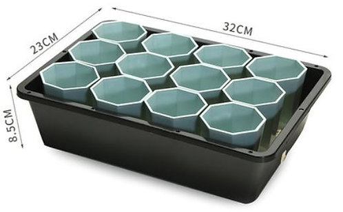 designer tray and blue pot for succulent plant