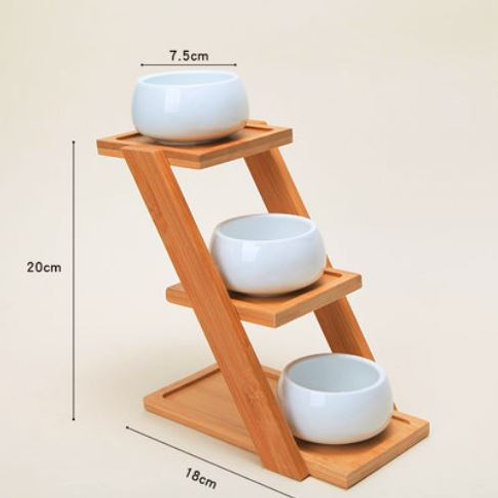 Designer Ceramic pot for succulent plants