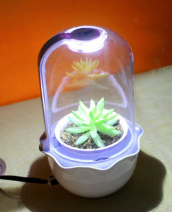 Smart Planter