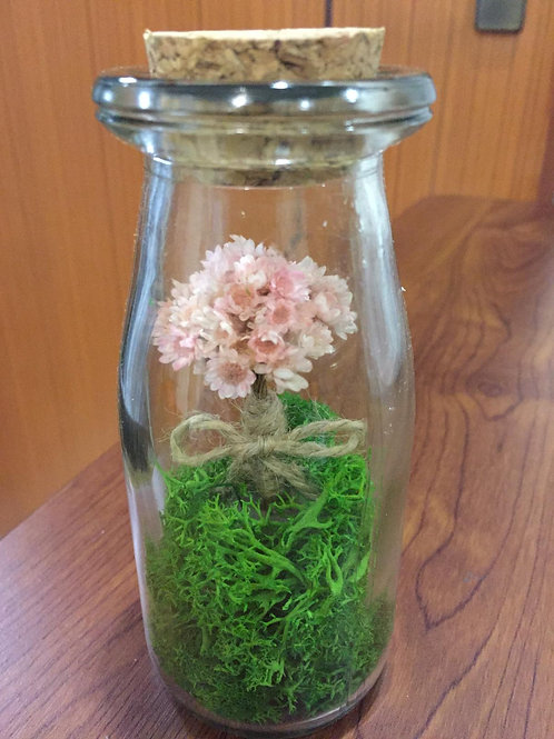Bottle with Star Flowers