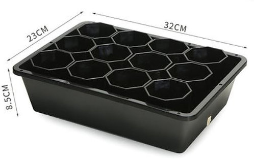 black designer tray and pot for succulent plant