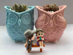 Succulent Owl Pot