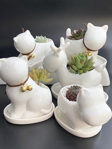 Porcelain Animal Pot