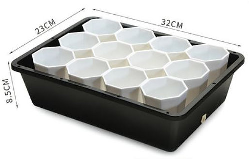 designer tray and white pot for succulent plant