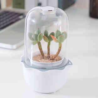 Smart Succulent Planter