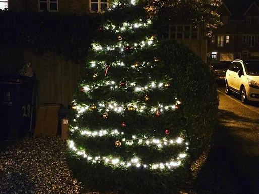Oh Christmas tree oh Christmas tree....