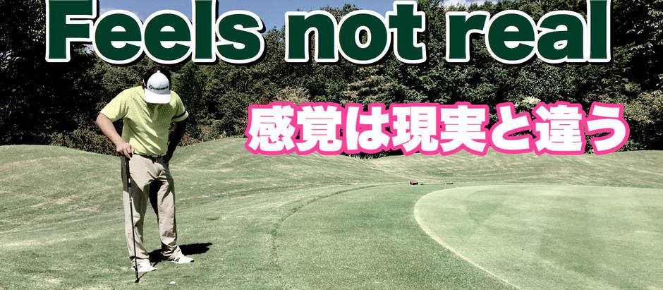 Feels not real 主観的な感覚はあてにならん(牧野訳)