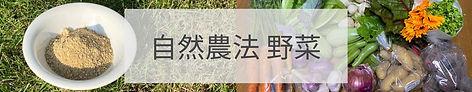 野菜バナー.jpg