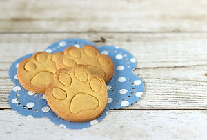 愛犬が喜ぶ美味しいクッキーの選び方について