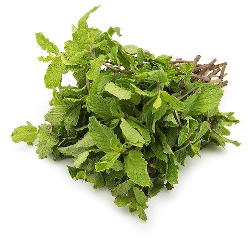 Pudina/Mint Leaves 200g
