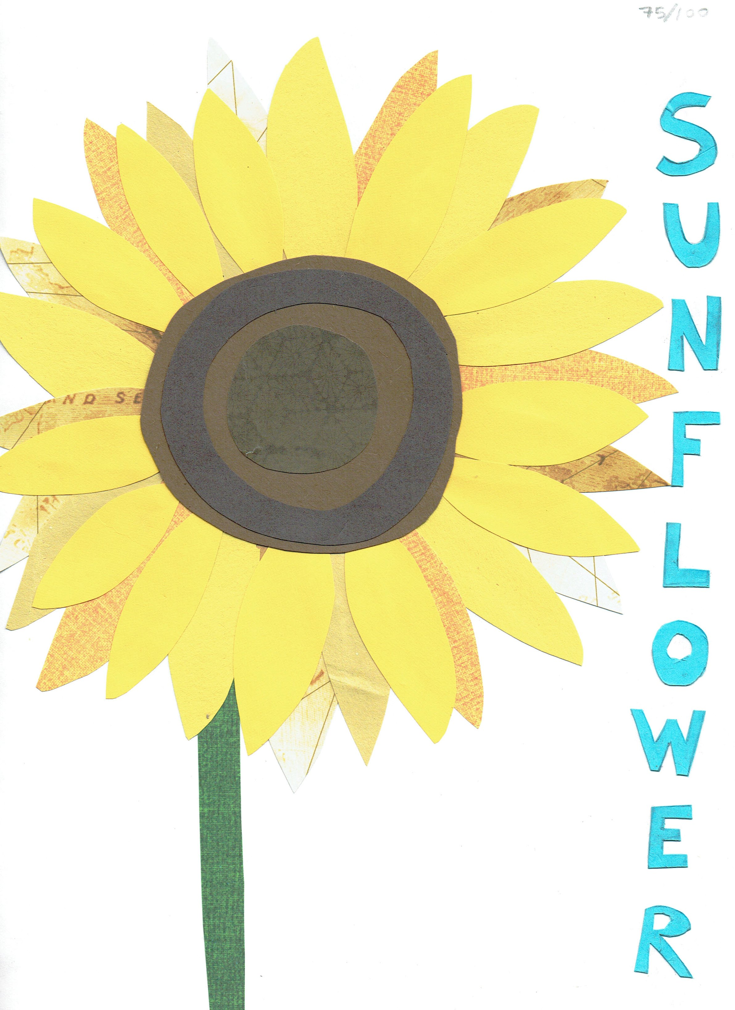 Day 75 - Sunflower