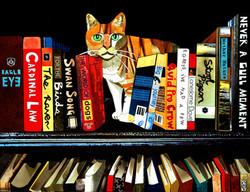 Oscar and His Books