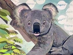 Kandee's Koala