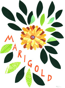 Day 49 - Marigold