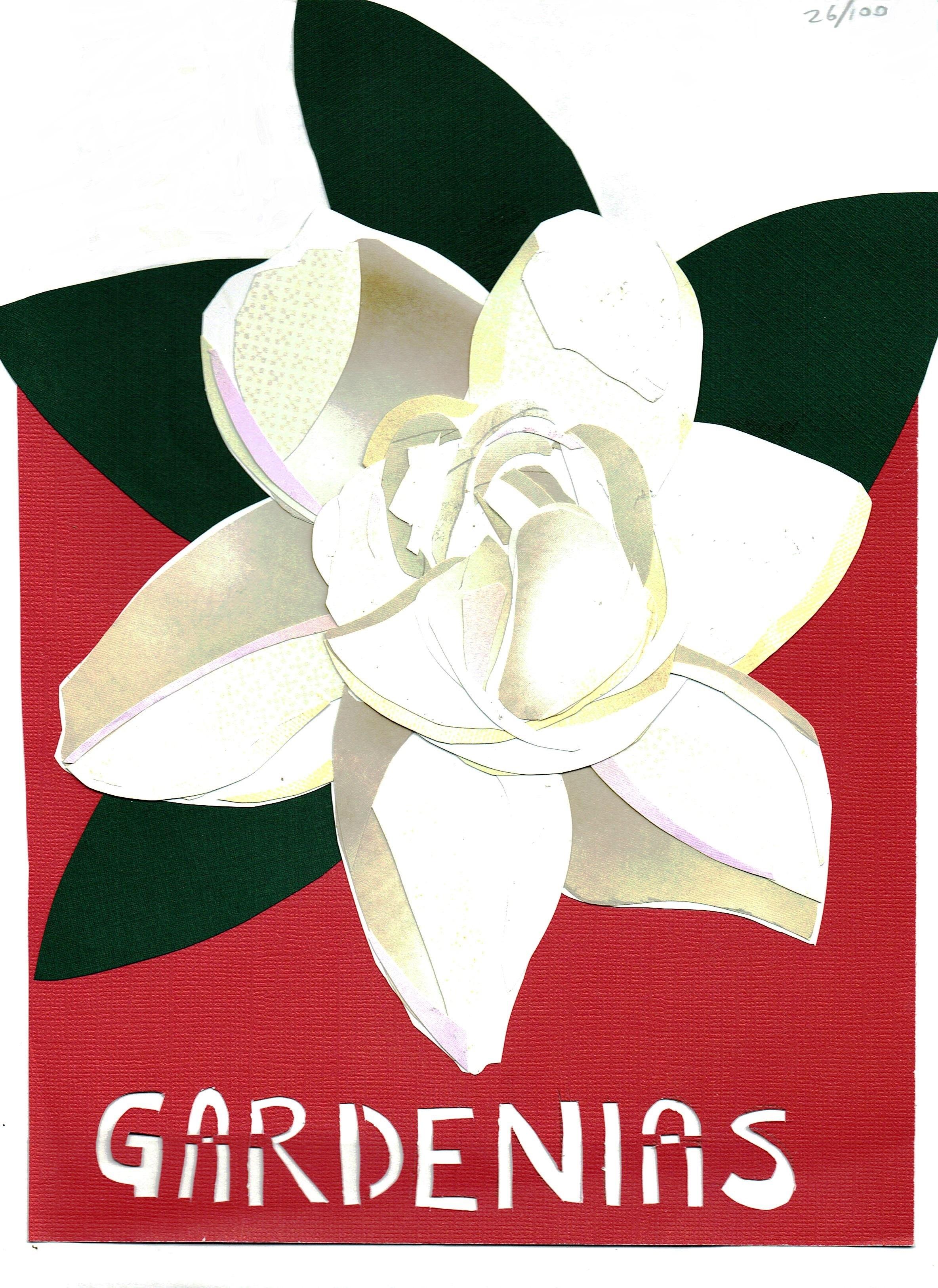 Day 26 - Gardenias