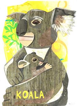 Day 41 - Koala