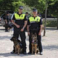Plicia local con perros_opt.jpg