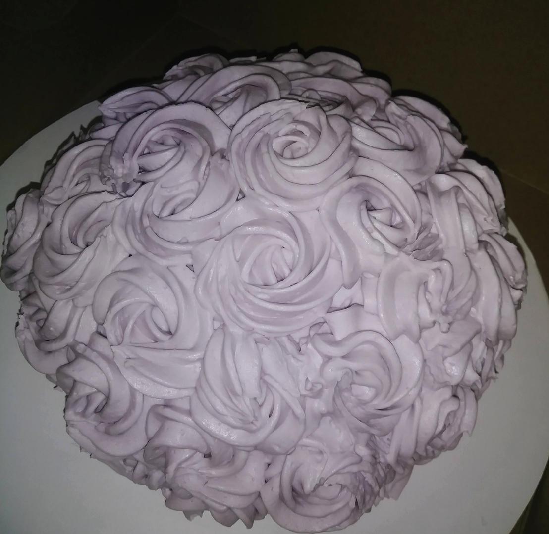 Purple Rosettes