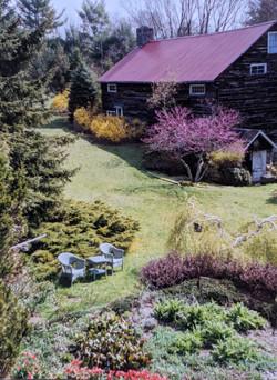 Garden in the 90s