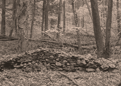 Farm-Era Stone Wall