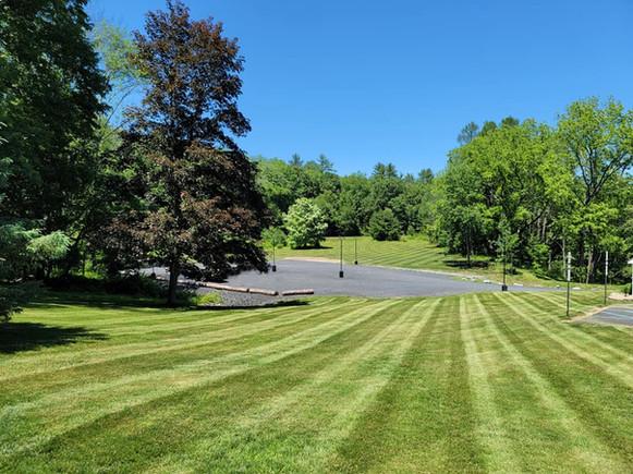 Parking Lot & Meadow